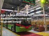 Halb automatisches SKD Bus-Fließband