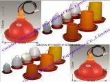 Équipement du système d'alimentation du poulet à la volaille en poudre en plastique