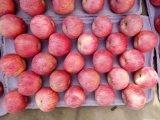 Qinguan Apple/Apple fresco con l'alta qualità
