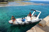 Aqualand 22feet 6.45m Fiberglass Rib Boat 또는 Rigid Inflatable Fishing Boat/(RIB650c)