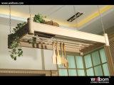 Конструкция 2017 неофициальных советников президента Welbom твердая деревянная античная