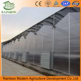 농업 PC 보드 온실 프로젝트