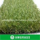 Grama verde natural superior do Decking do lazer da paisagem (AMF411-30L)