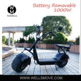二重シートの便利な出力上等の市場が付いている1000W 60Vの都市ココヤシのスクーター