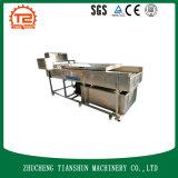 Machine en brosse de nettoyage de pomme de terre et nettoyeur et rondelle emballés
