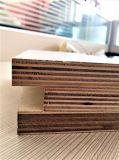 Madera contrachapada, álamo, madera dura Combi, abedul, eucaliptos, madera contrachapada comercial