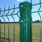 녹색 PVC 입히는 삼각형 구부리는 담 그물세공