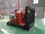 Jogo de gerador sadio Lvhuan do biogás da prova 300kw Cummins com tomada de fábrica refrigerar de água do CHP para o mercado ultramarino