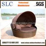 Daybed ротанга/мебель патио/Wicker Daybed (SC-B7020)
