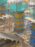 Système vertical de coffrage de colonne (LW-CF01)