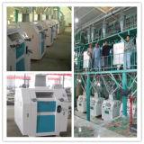 Fräsmaschine des Weizen-60t/24h, Weizen-Getreidemühle