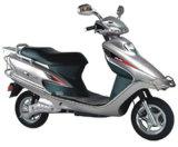 E-Roller (MTD08Z)