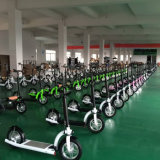 300W batterie au lithium pliable adulte scooter électrique 1201