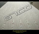 madera contrachapada laminada Parota de la base de 4.8m m &18mm Combi para el mercado de Suramérica
