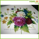 Alibaba Supplier Durer Diecut Logo Sticker Printing