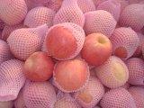 Rotes Fushi Apple