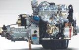 800cc motore (LJ462MW)