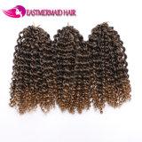 Trecce sintetiche ricce di estensioni dei capelli di bellezza 8inch Ombre sintetiche