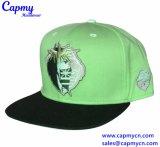 Qualitäts-Hysteresen-Schutzkappe/billig Hiphop-Schutzkappen-Hut anpassen
