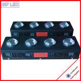 504W la PANNOCCHIA LED si sviluppa chiara per medicina e la serra