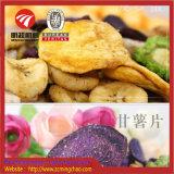 Les fruits de mer / Fruits Légumes / Nourriture Machine de séchage à air chaud bouteille sécheur