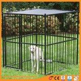 O elo da corrente de alimentação para animais de estimação prova canil cão
