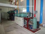 Armazenamento a frio personalizados para produtos hortícolas Frutas Frescas de manutenção da fábrica de processamento