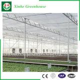 야채를 위한 폴리탄산염 온실 수경법 시스템 또는 꽃 또는 과일