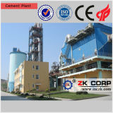 De professionele Gebouwde Installatie van de Productie van het Cement voor Verkoop