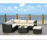 Muebles al aire libre del patio de la rota moderna del jardín (GN-9032-1S)