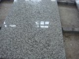 Bianco White Granite G655 для Airport Project