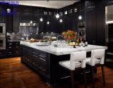 Ontwerp van de Keukenkasten van het Meubilair van het Huis van China het Modulaire met Stevige Houten Deur