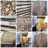 По-разному подгонянный емкостью овощ нержавеющей стали/машина обезвоживателя плодоовощ/мяса Drying