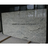 Giallo Sf Reale Azulejos de pared Piedra de granito