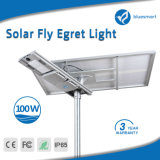 luz solar do jardim da fonte dos fabricantes de China do preço de 100W Fatcory