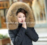 Peluche Raccoon Fur Collar per Hood