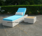 Nieuwe Chaise van het Bed van de Zon van het Meubilair van de Rotan van het Hotel van het Ontwerp Openlucht Enige Lanterfanter (ytf552-1)