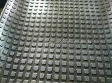 Fabricante de goma de la estera con gran capacidad