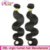 Естественные Unprocessed волосы мягких и блеска девственницы Монгол
