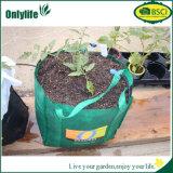 O PE de Eco-Frinedly customizável cresce o saco