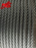 Corde galvanisée de fil d'acier 6X37+ Iwrc pour Derricking
