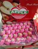 Shanxi 기점 좋은 품질 빨간 FUJI Apple