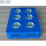Le bon ÉPI LED de la rétroaction 756W de GIP se développent léger pour la croissance de plantes