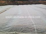 Spunbond respirável anti protecção contra congelação Fleece Frost Cobrir Nonwoven Fabric