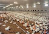 Vollkommenes laufendes Brathühnchen-Bauernhof-Geflügel-Gerät für Verkauf