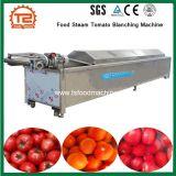 Máquina de branqueamento de vapor industrial dos alimentos máquina de branqueamento de tomate