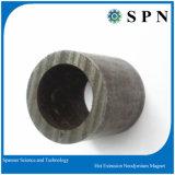 Magnete urgente caldo del neodimio/magnete caldo permanente dell'espulsione di NdFeB