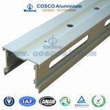 De aangepaste Uitdrijving van het Aluminium/van het Aluminium met het Machinaal bewerken voor Bouw