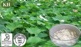 Estratto naturale Nucifrine del foglio del loto