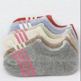 De vrouwelijke Katoenen Socks/Ms Lage van de Sokken/van de Minnaars van de Buis Sokken van het Schip van de Heimelijkheid van de Manier